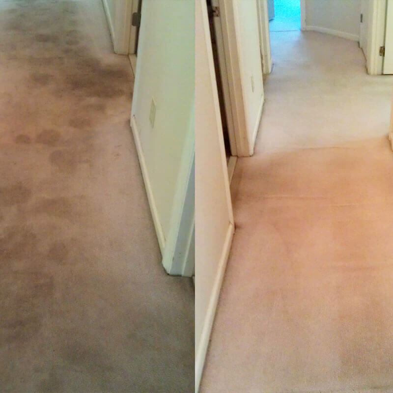 Before and After a carpet cleaning from Massey's Chem-Dry