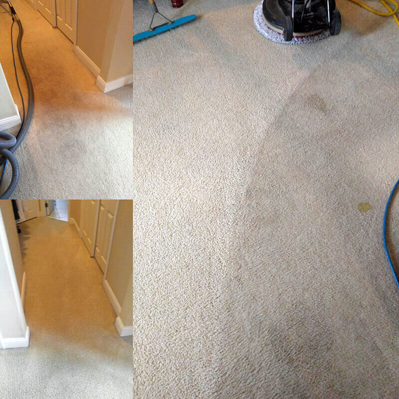 Before and After a cleaning from Massey's Chem-Dry